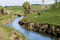 River - MorgueFile - New Zaeland 2014_18 - 200px